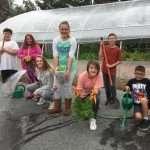 Greenhouse Harvest!
