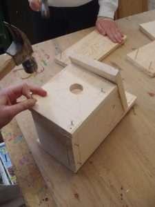 Birdhouse Construction